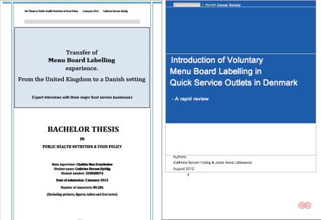 Diabetes literature review thesis