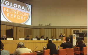 The Global Nutrition Report Launch in Rome. Dr. Lawrence Haddad is speaking.