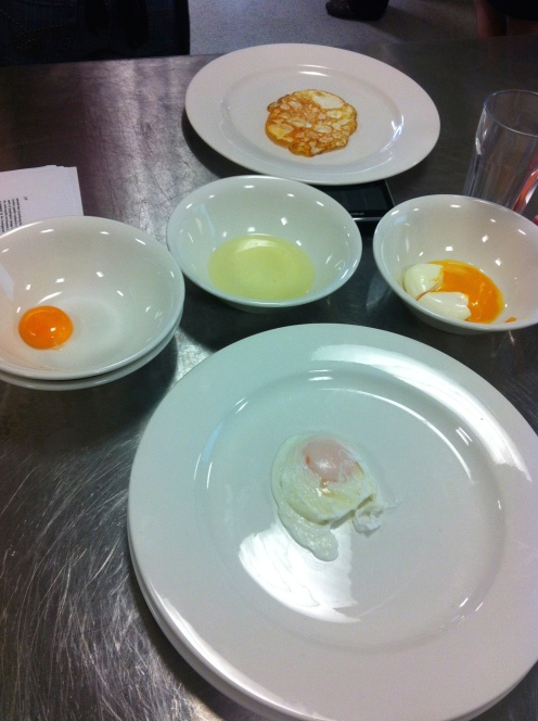 """Tute"" in Food Studies; testing five different preparation methods of egg and how these result in chemical, physical, biological and sensory changes"